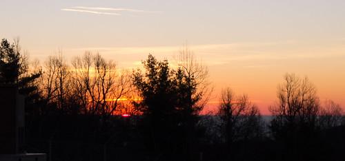 Sassafras Sunrise on New Years Day-16