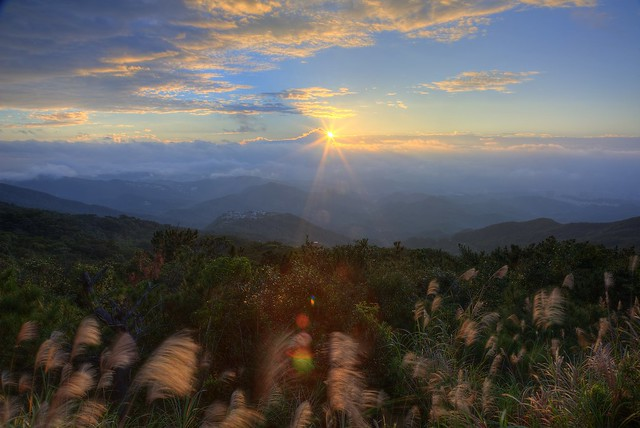 PS兔~兔兔兔~ - u65e6u8272uff0cu98dbu832b ~ Dawn of  u4e94u6307u5c71  Wuzhi Mountain, New Taipei City~