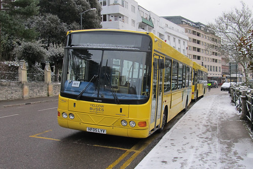 VM502 Yellow Buses