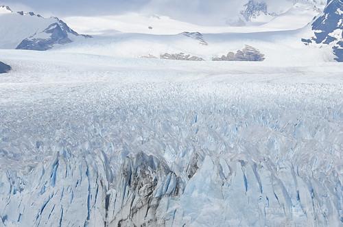 【写真】2015 世界一周 : ペリト・モレノ氷河/2015-01-27/PICT8842