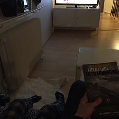 En som vill se på barnprogram och en som vill läsa Hal Koerners Field Guide to Ultrarunning. Bra kombo efter middan....