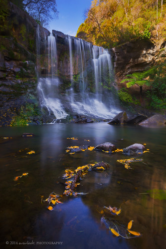 newzealand landscape photography waterfall hike auckland aotearoa everlook hopetounstreet goldiebush mokoroafalls whitecliffsnorthisland