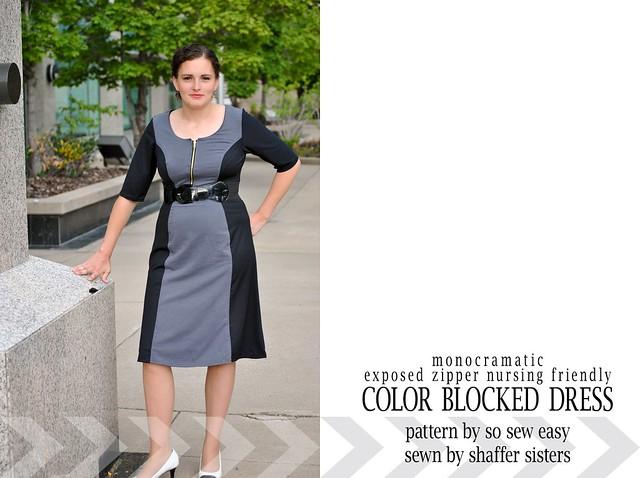 Zipper Bodice Nursing Dress