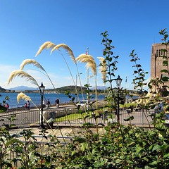 """Looking back: Oban, Scotland 2014 """"We look to Scotland for all our ideas of civilisation."""" Voltaire"""