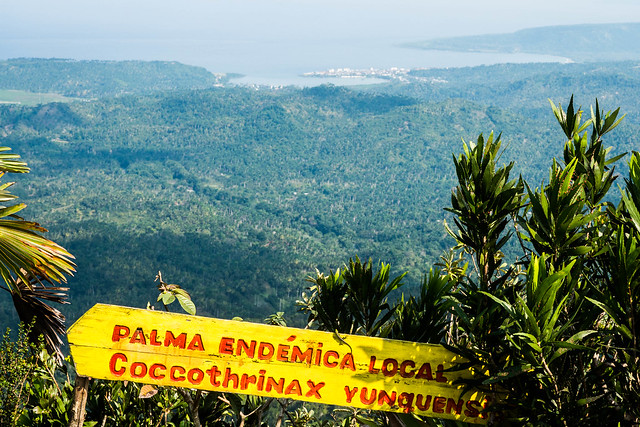 The view from tabletop mountain in el Yunque national park,Baracoa, Cuba.jpg