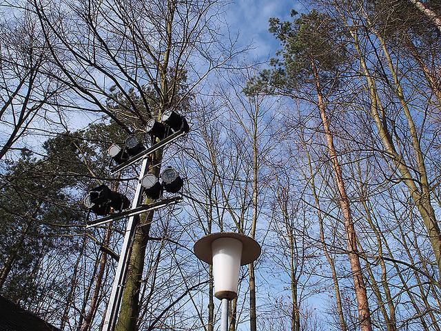 15-03-08_Reichenau_P3080051