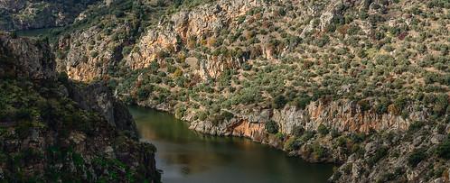 Razones para recorrer el Sendero GR 14 en Zamora. Arribanzos