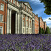 Lavender at the Peninsular Barracks in Winchester by neilalderney123