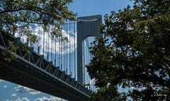 VERRAZANO BRIDGE-Fuhgeddaboudit