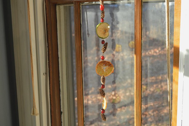Dried Fruit Garland