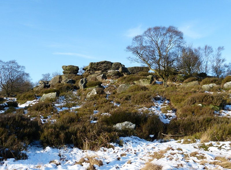 P1100593 - Brimham Rocks