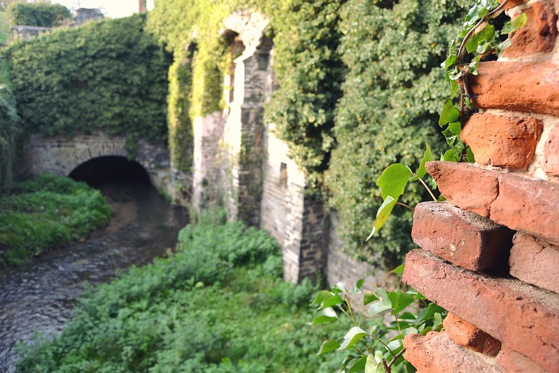 Abbaye de Villers 17