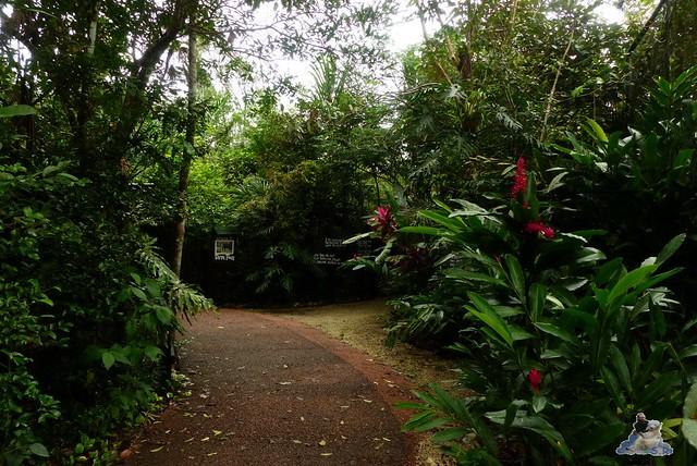 Belize Zoo 19.11.2014 21
