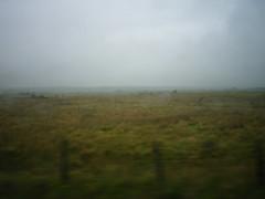 Train to Holyhead (V)