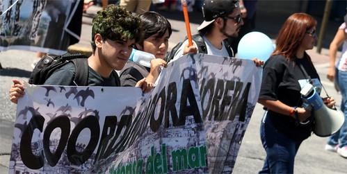 Otra victoria para las comunidades: 1000 observaciones al EIA de Central El Campesino