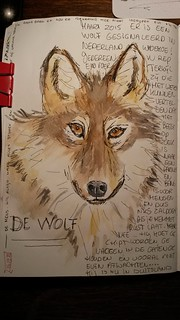 The Wolf....