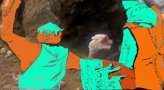 Rabbitattack