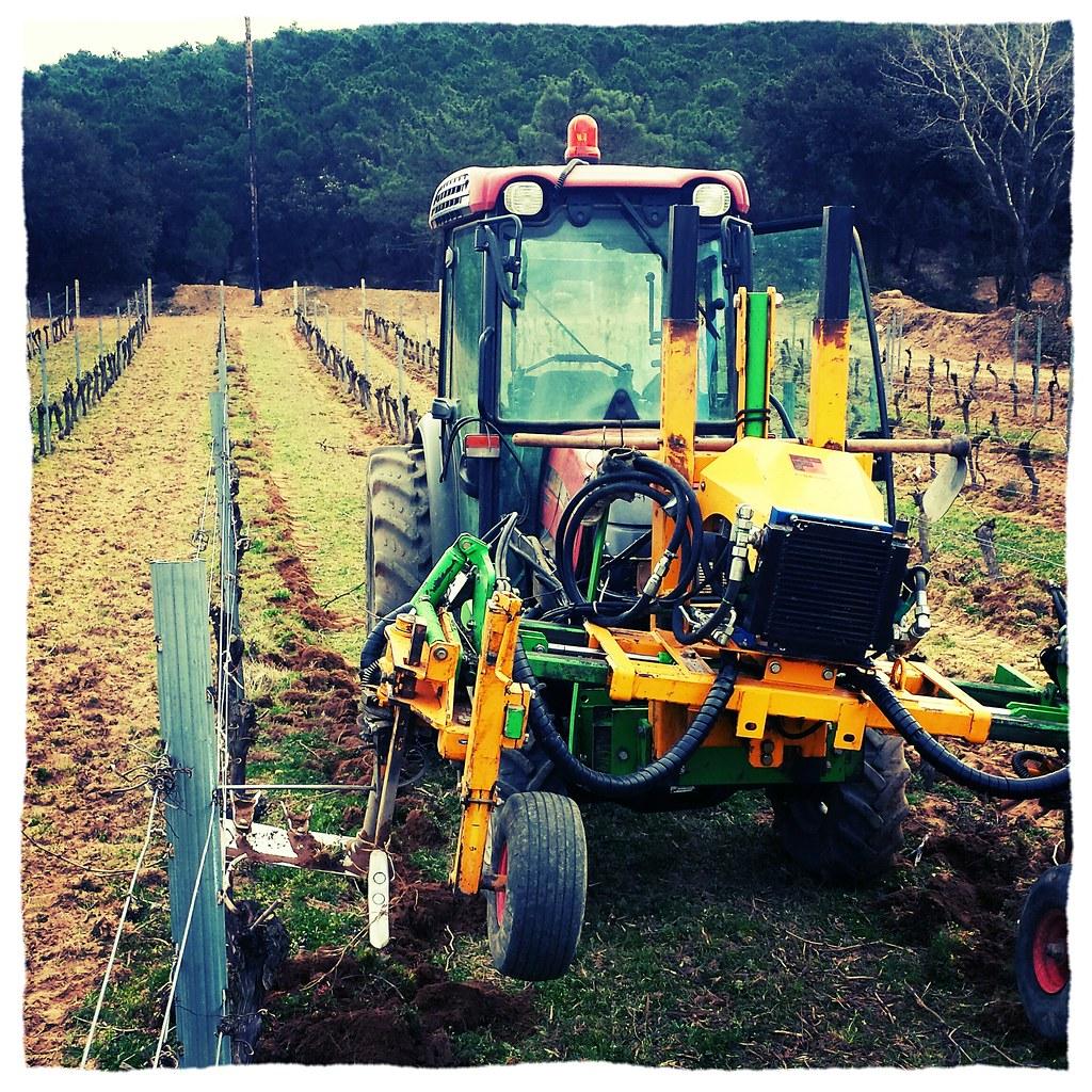 agriculture biologique dans les vignes du Château Beauregard Mirouze :passage des interceps