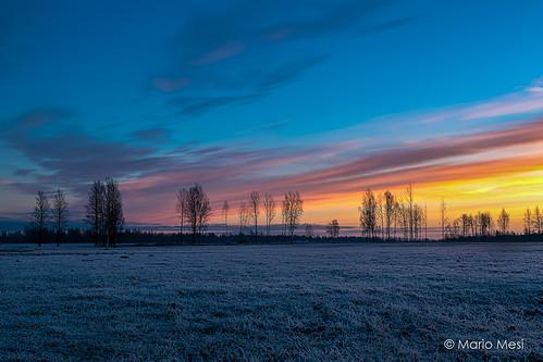 winter cold sunrise canon landscape estonia eesti tartu maastik päikesetõus raadimõis 5dmk3