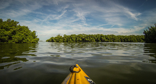 Indian River Paddling-016