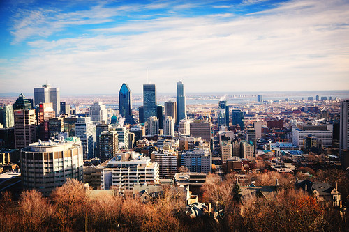 city autumn urban canada skyline architecture landscape cityscape view quebec montreal mcgill