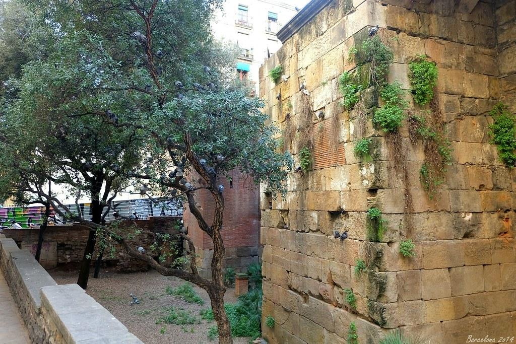 Barcelona day_1, Carrer de la Tapineria