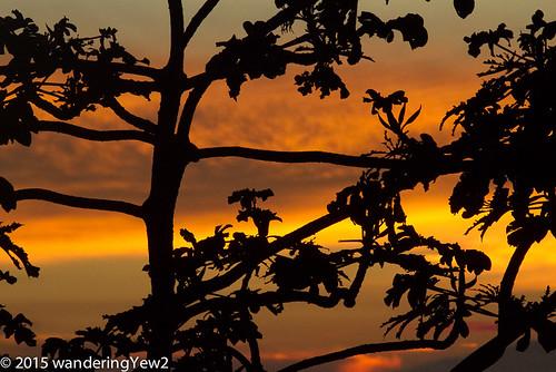 sunset geotagged costarica monteverde wildernesstraveltour geo:lat=10313219855161412 geo:lon=8482366114854813