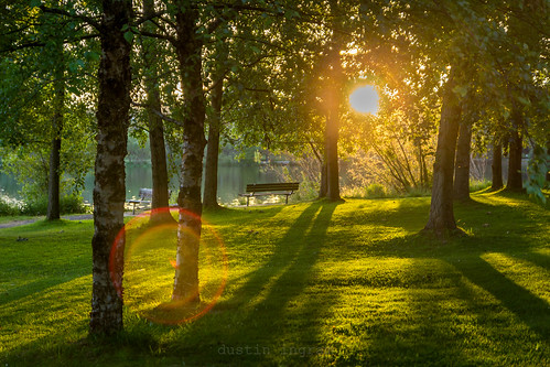 sun sunset trees nature greenlake seattle bench canon canont3i canonphotography evening