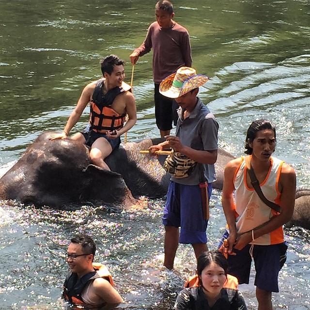 很喜歡這張照片。有種在大自然中,人類和大象攜手合作,ㄧ起度過深潭。