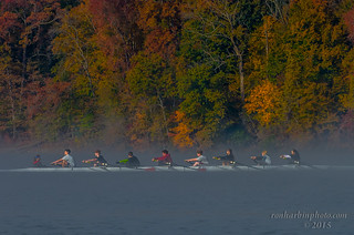 Rowing through the mist...