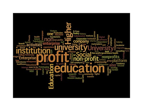 what best describes your organization other wordle