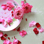 Fading Roses
