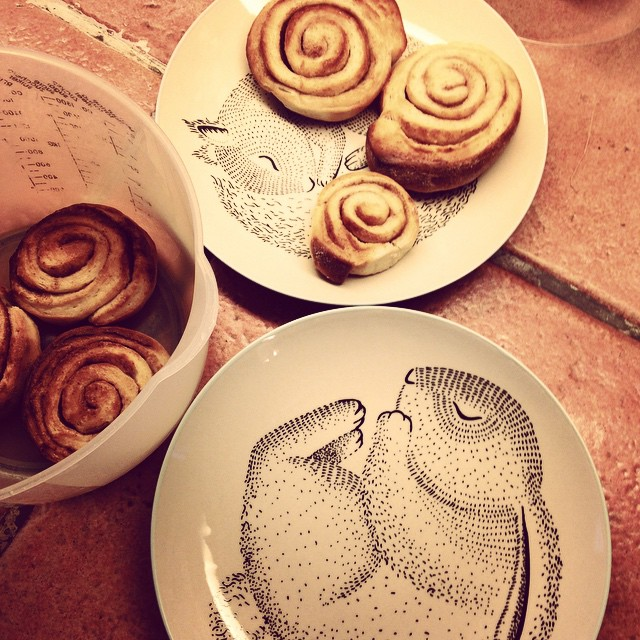 all kinds of things roll up like cinnamon buns