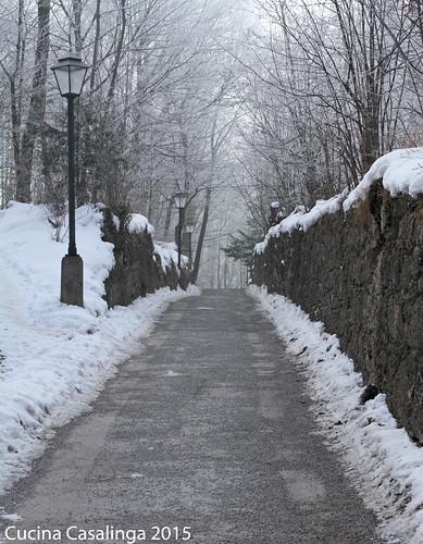 Salzburg Festungsweg 4
