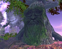 elf forest3
