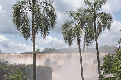 【写真】2015 世界一周 : イグアスの滝・ロワートレイル(1)/2020-09-13/PICT7491
