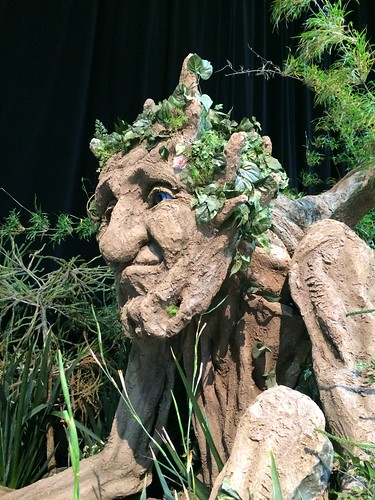 San Francisco Flower Garden Show 3/19/2015