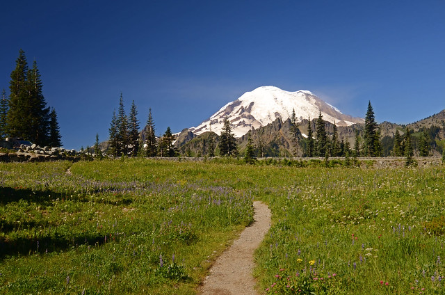 Way to Mount Rainier