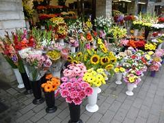 畢業典禮可見許多祝福花束。圖片來源:pixabay