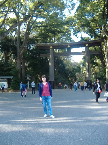 Torii at the Meiji Shrine
