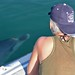 Eye to eye with a Bottlenose dolphin - Photo by Tethys Research Institute
