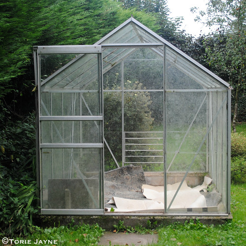 Greenhouse before 4