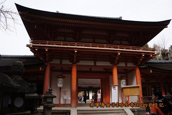 日本奈良春日大社06