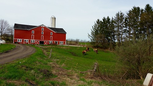 Farm Outside of Meyersdale