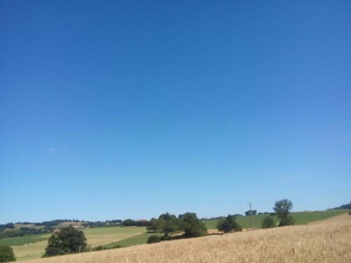 Les environs de Belmont  Toujours en partant de L'Épinette, direction l'église  Un paysage qui fait très carte postale !  #iloveit #belmontisere #38 #natura #natureaddict #nature #calme #verdure #rhonealpes #auvergnerhonealpes #isere  #Isère #vitisere  #p