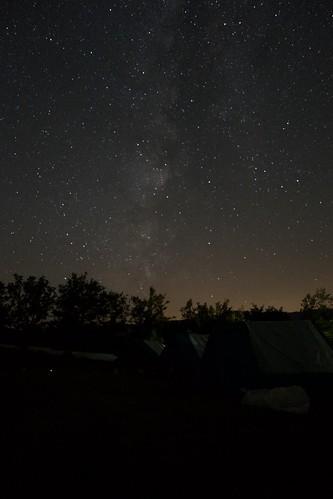 I tuoi cieli sembran prati, e le stelle tanti fior.