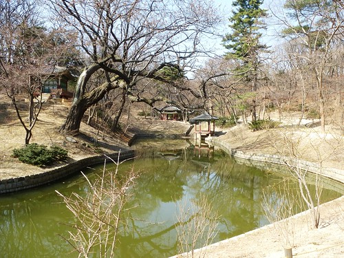 Co-Seoul-Palais-Changdeokgung-Jardin secret (18)