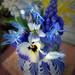 Little blues by Zsaj