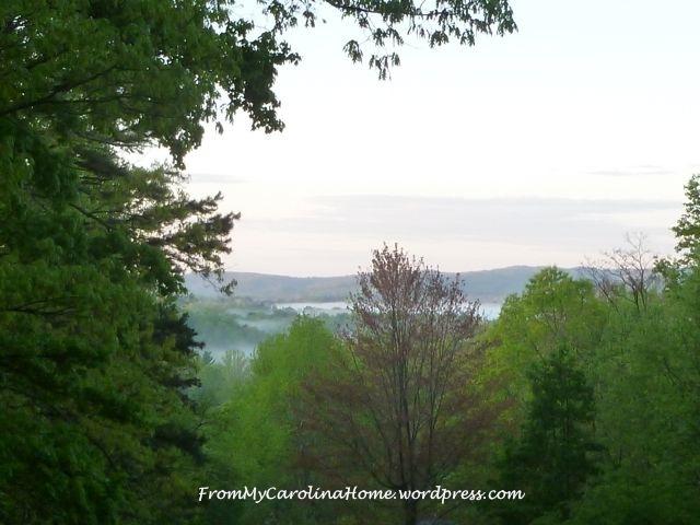 April Dawn 2015 -2