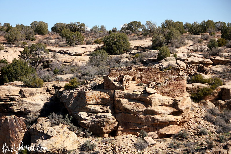 Hovenweep National Monument_feistyharriet_March2015 (2)